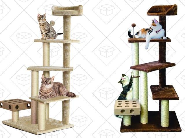 Poging om de liefde van uw kat te kopen met deze afgeprijsde kattenboom van Woot