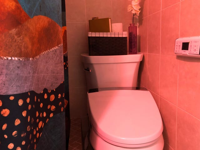 Kohler's Novita Electric Bidet Drops the Perfect Deuce Of Features and Value