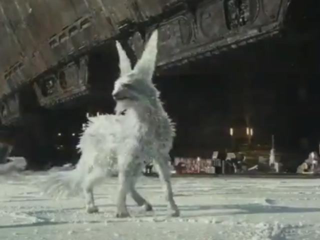 对于你家里的Porg仇恨者,我们可以推荐这款可爱的水晶狐狸