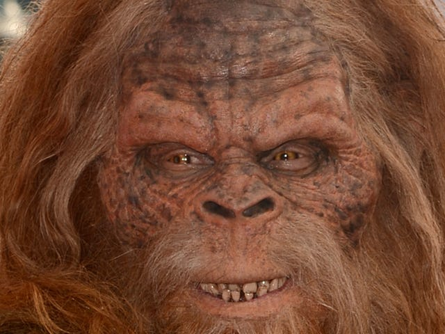 Puzzling Montana Shooting Blamed on Sasquatch Mistake: 'I Thought You Are Bigfoot'
