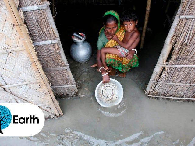 Jutaan Pengungsi Iklim Sudah Kehilangan Rumah Mereka