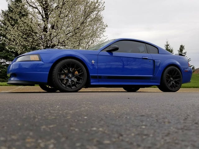 At $15,250, Could This 2003 Ford Mustang Mach 1 Get You To Pony Up?