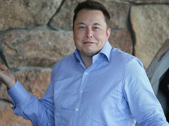 14 cuentas que sigue Elon Musk en Twitter (y que probablemente explican muchas cosas)