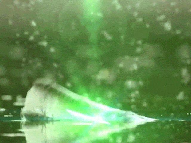 Ang mga nakakatawang video ay nag-iisip kung ang mga crocodile ay maaaring mag-shoot ng mga lasers sa iba pang mga hayop