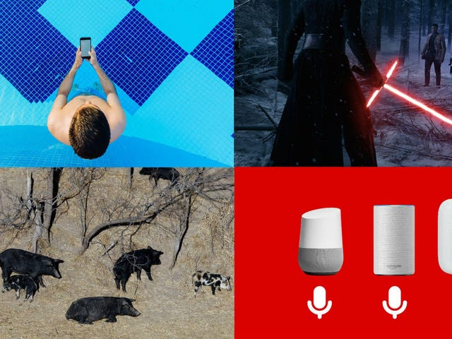New Galaxy Notes, Feral Hogs, and a Retired Digital Prophet: Best Gizmodo Stories of the Week