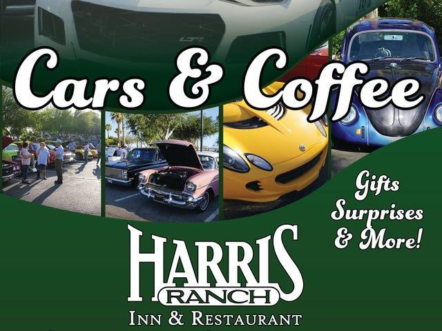 Cars N Coffee Insanity