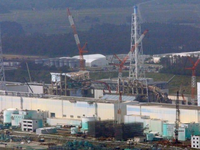 अन रोबोट लॉग्रा fotografiar por primera vez el núcleo fundido del reactor 3 en la central nuclear de fukushima