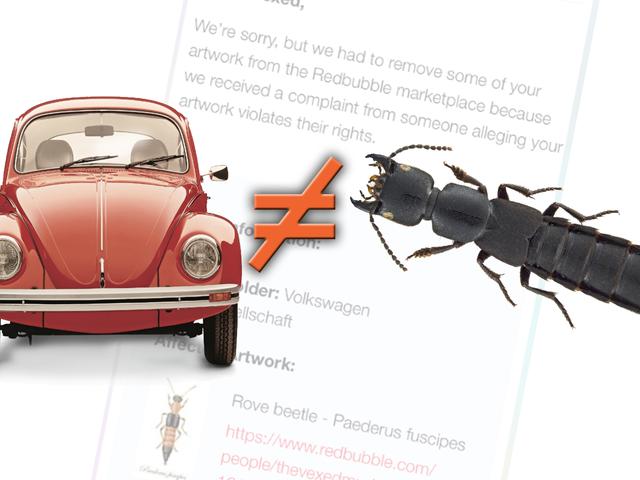 """Volkswagen musi być przypomniany, że nie ma słowa """"Beetle"""""""