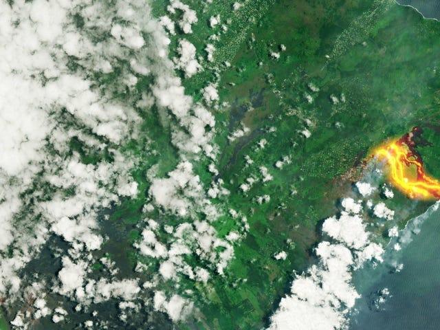 Los ríos de lava del Kilauea al rojo vivo, vistos desde el espacio