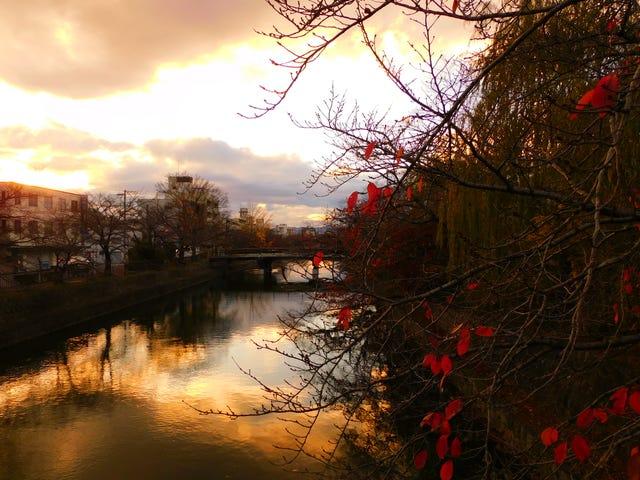 Riflessione.  Kyoto, Giappone.  Di Fatima Budair