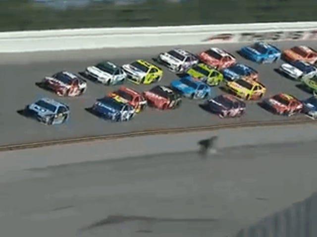 Talladega's last lap yesterday