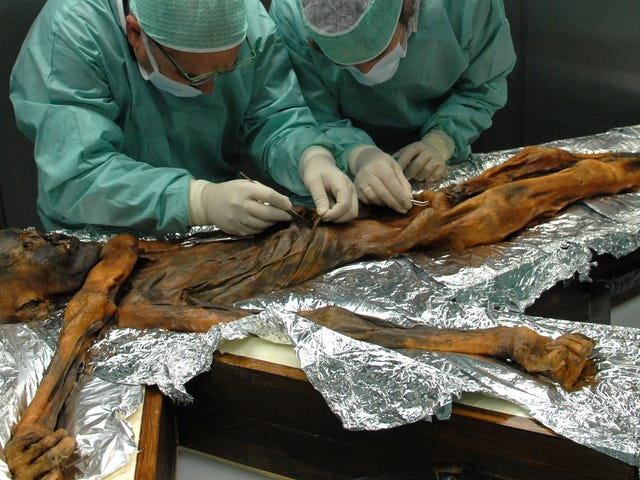 Ötzi the Iceman's Final Meal Was Surprisingly Hearty
