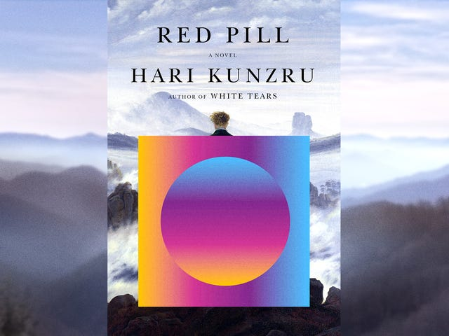 A lib gets triggered into madness in Hari Kunzru's smart, savage Red Pill