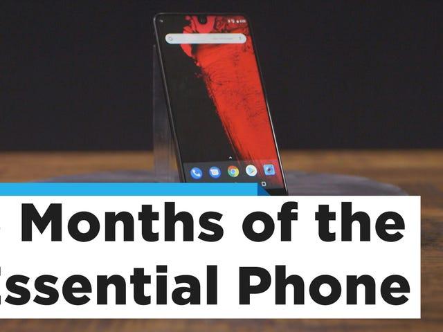 El teléfono esencial finalmente tiene sentido