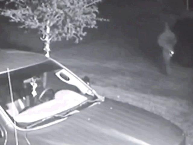 Man Tertangkap Mencuri Van Pasangan Houston untuk Kejahatan Lainnya, Mengembalikannya Setiap Malam