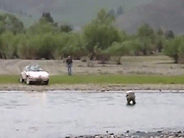 Héroe internacional nos muestra todo cómo Ford un río en un Porsche 911