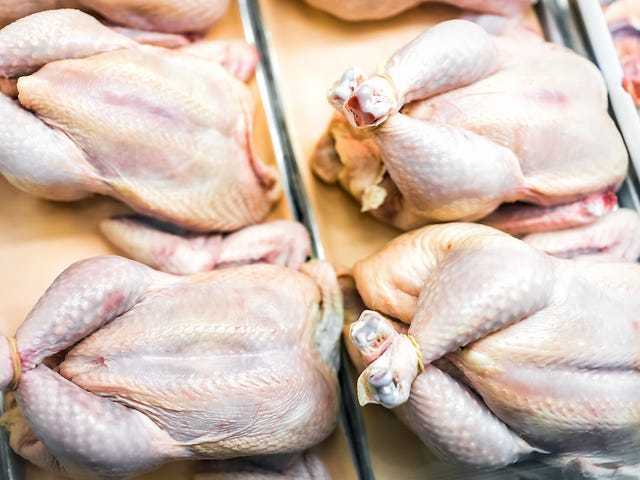 Group sues USDA, claiming there's poo on your chicken