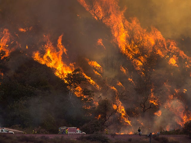 California Is Prioritizing Mental Health Among Firefighters as Climate Change Worsens Wildfires