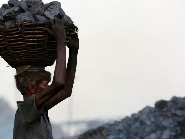 Informe: el primer ministro de India propone ayudar a la industria del carbón a sobrevivir en medio de la crisis climática