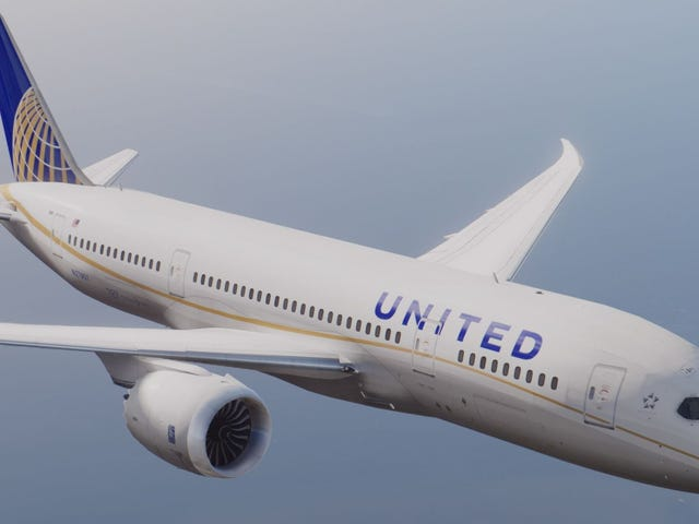 Someone should paint the Boeing 787-8