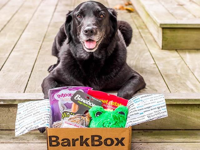 Share Monthly Toys and Treats with Your Dog from BarkBox (One Month Free)