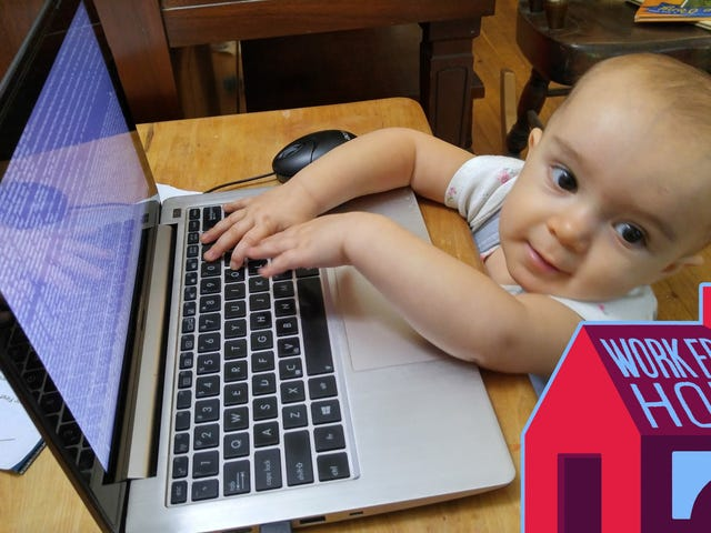 Why You Should Consider Day Care if You're a Work From Home Parent