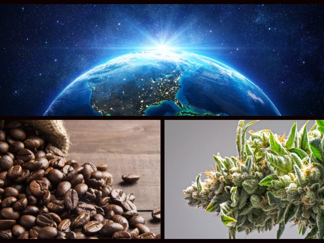 Earth's two most important crops—weed and coffee—are heading to space