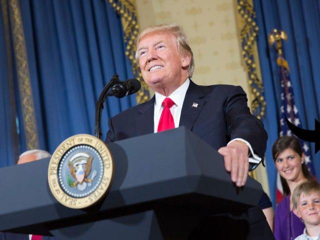 Les sourcils de Trump Supporter ont l'Internet demandant: 'What Are Those ???'