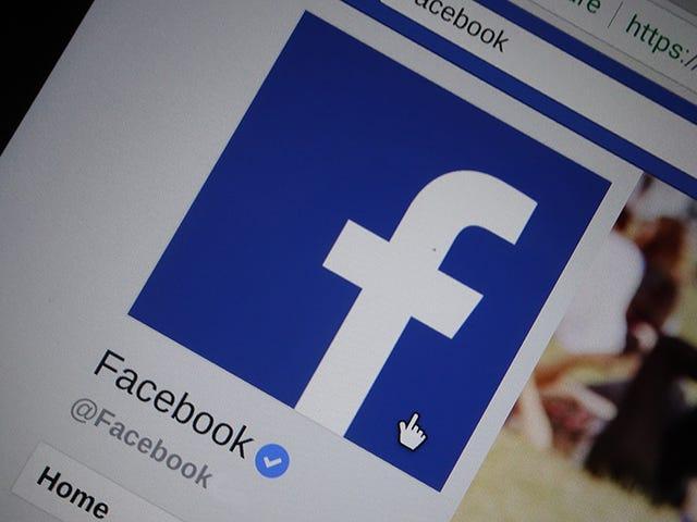 Ahora è un momento cruciale per la revisione di aplicaciones de Facebook tienen tus datos personales <em></em>