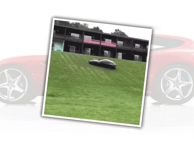 Assista a uma Ferrari FF Cavort na grama como um bebê cabra