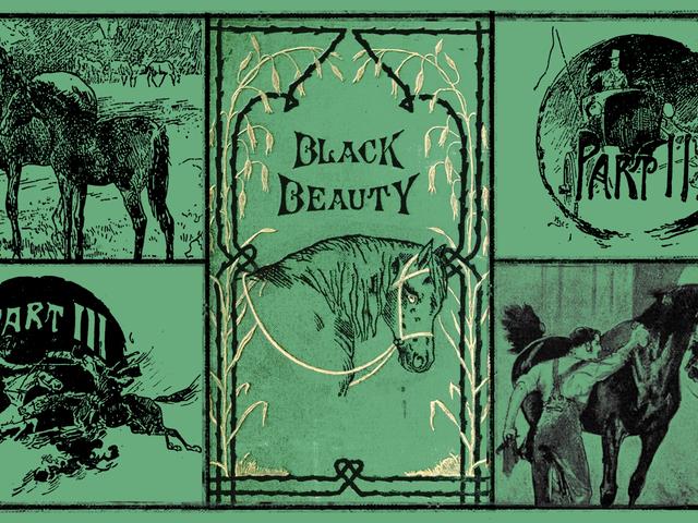 The Unashamed Empathy of Literature's Original Horse Girl