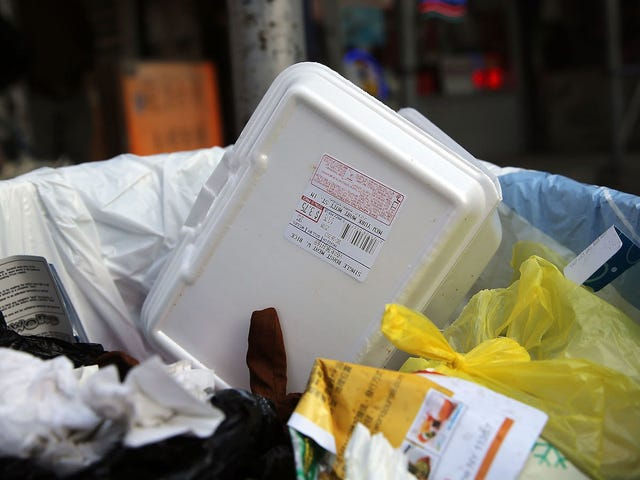 Congrats to Maine, the First State to Ban Styrofoam