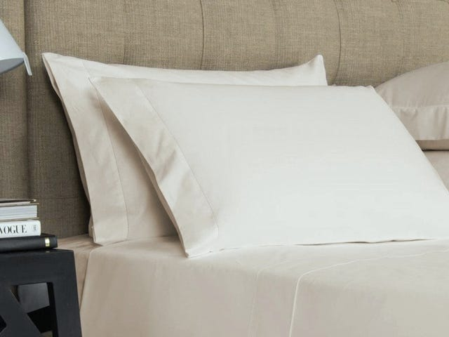 Spend Your Nights On Egyptian Cotton With This One-Day Sale