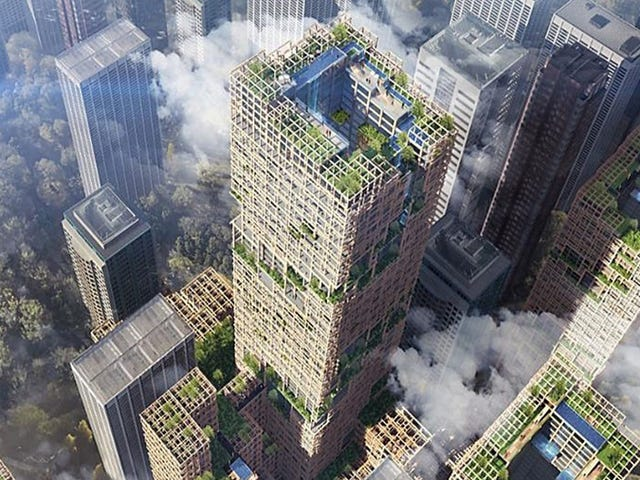 Are Wooden High-Rises the Real Deal?