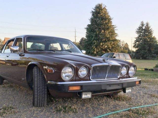 At $5,500, Would You Let This 1980 Jaguar XJ6 Series III Class Up the Joint?
