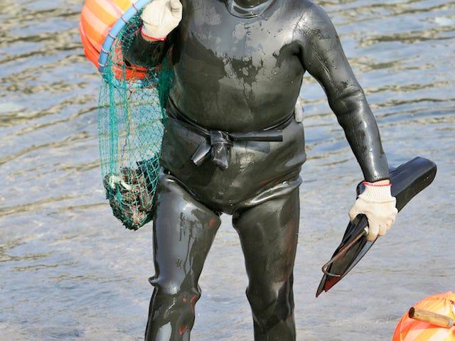 Những thợ lặn Hàn Quốc này là một số quý ông chủ nghiêm túc