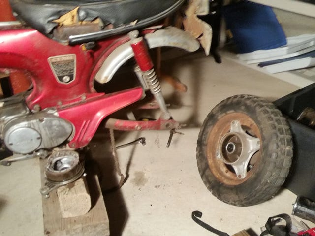 Whoops I accidentally made progress on the rat scooter
