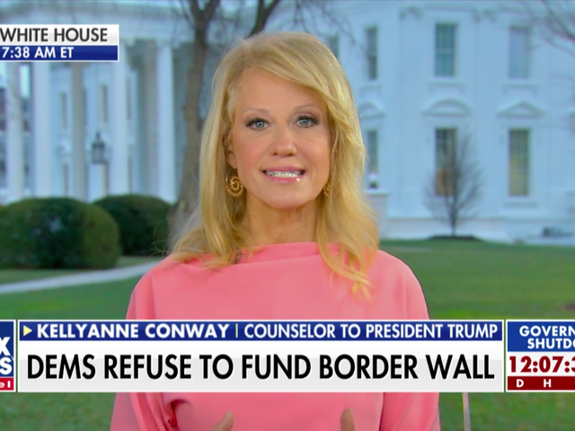 Kellyanne Conway Hits New Low, Which Seemed Impossible But Was Actually Possible