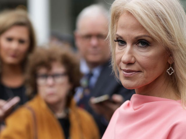 Kellyanne Conway Tried to Burn Joe Biden. Then Her Husband Came and Lit Her Ass Up