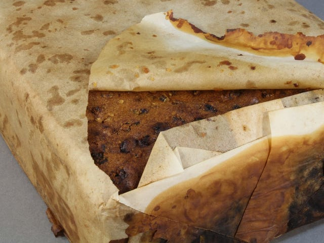 Hundred-Year-Old Antarctic Fruitcake Found in 'Excellent Condition'