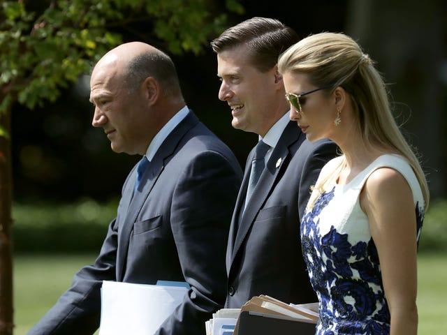 Presidente Pussy Grabber quer trazer supostos agressores domésticos para a Casa Branca: relatório