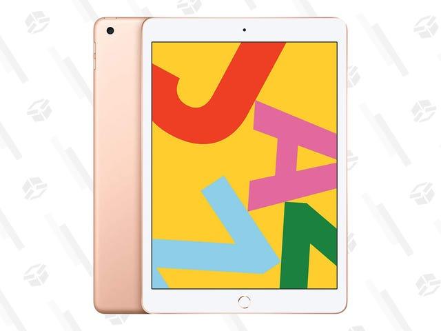 "Apple's Gold Standard 10.2"" iPad Slides Back to $250"