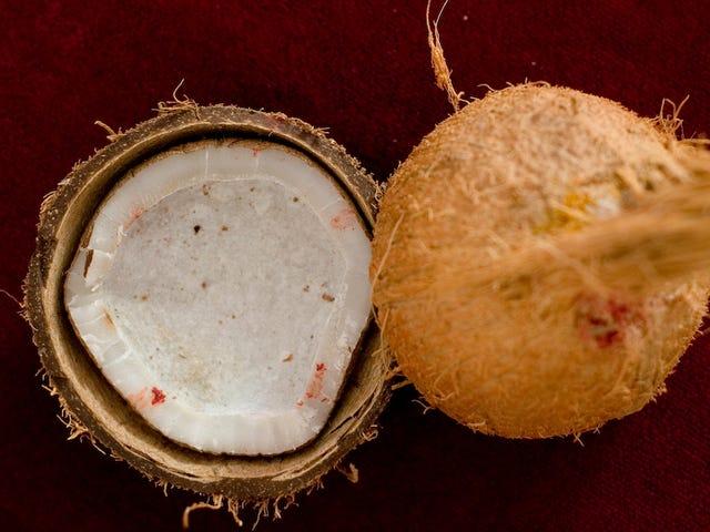 Please Calm Down: Coconut Oil Is Fine