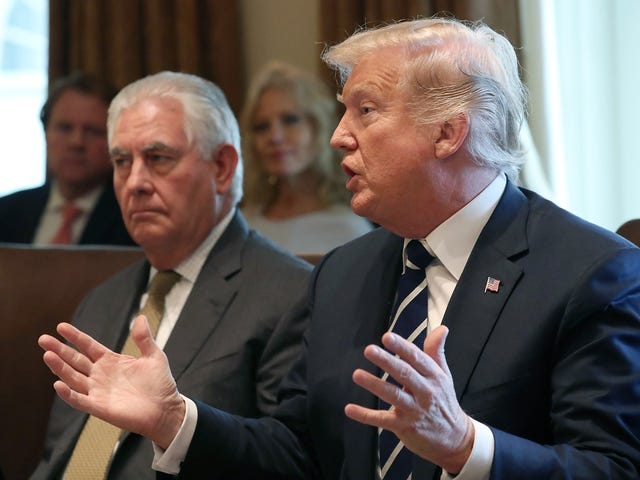 'Rex, Eat the Salad': Trump Pulled an Ike Turner and Ordered Tillerson to Eat Wilted Greens