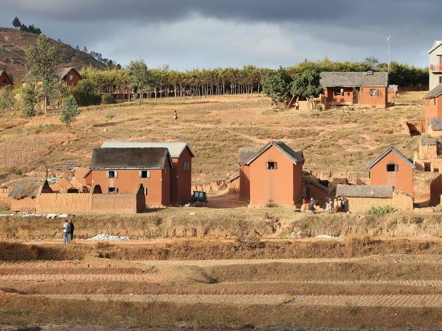 Madagascar lutte contre une épidémie mortelle de peste