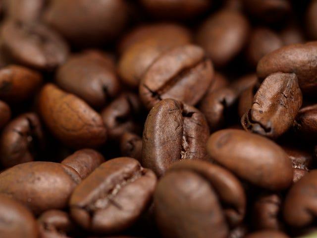 Comment apprécier le café