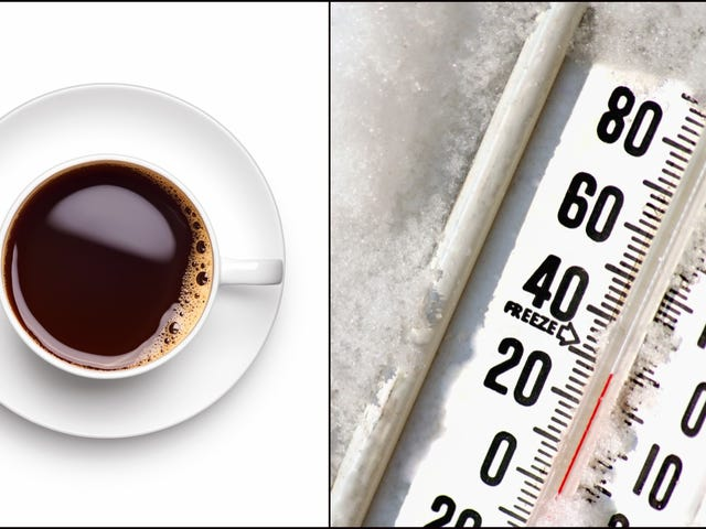 Halo Burgers Kaffee zu einem günstigen Preis macht die Winter in Michigan erträglicher