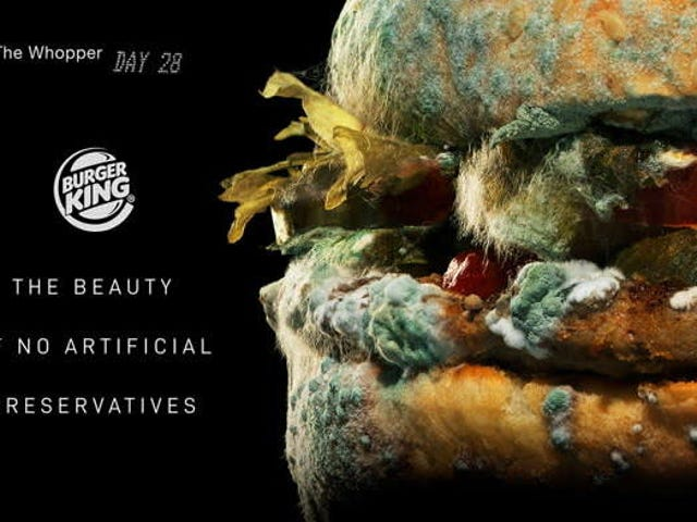 Burger King's new ads find beauty in a moldy Whopper