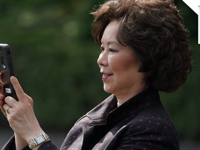 Stay Shady, Elaine Chao
