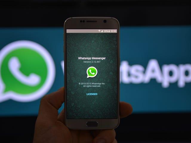 WhatsApps kryptering kunne være genstand for den næste retfærdighedsafdeling